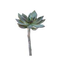 SUCCULENT - plante artificielle - synthétique / métal - H 15 cm - vert