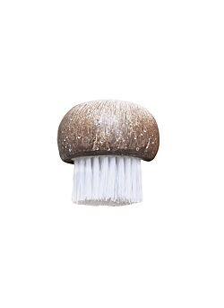 Point-Virgule champignonborstel