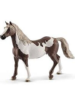 Paint horse Ruin hengst