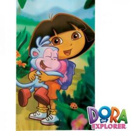 Dora The Explorer - treat bags