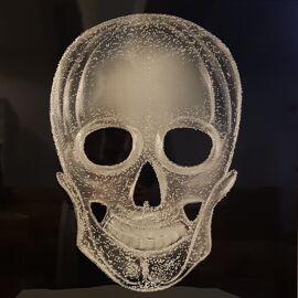 Skull silver ingelijst