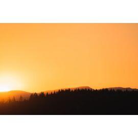 Golden Sunrise - AS 360
