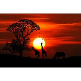 Africa Sticks
