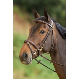 HFI Functional Bridle