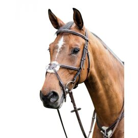 Prestige Leather Crossed Bridle