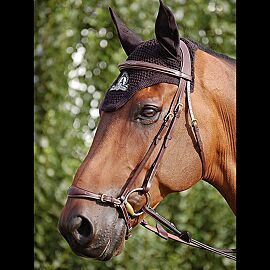 Dy'on Drop Noseband Bridle