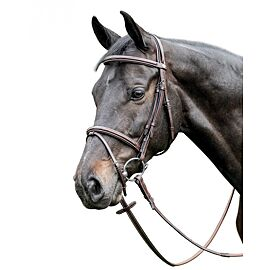 Prestige Leather Raised Bridle