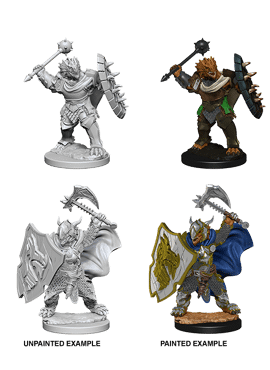 Nolzur's Miniatures: Dragonborn Male Paladin