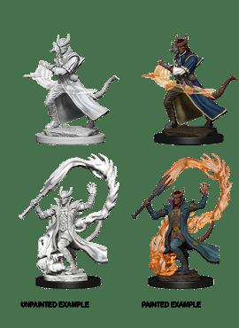 Nolzur's Miniatures: Tiefling Sorcerer (Male)
