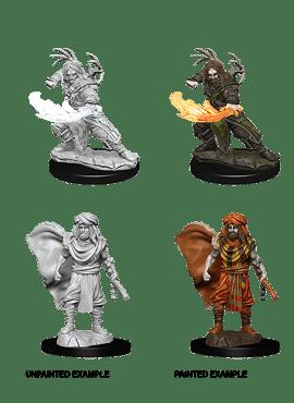 Nolzur's Miniatures: Human Druid (Male)