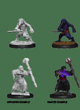 Nolzur's Miniatures: Kenku Adventurers