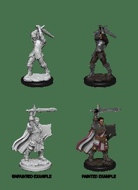 Nolzur's Miniatures: Male Human Paladin