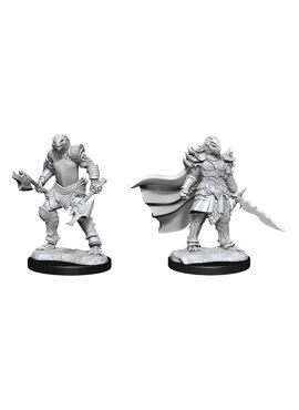 Nolzur's Miniatures: Dragonborn Fighter v2