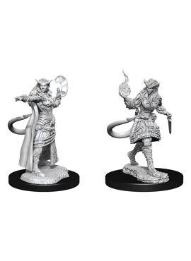 Nolzur's Miniatures: Female Tiefling Sorcerer