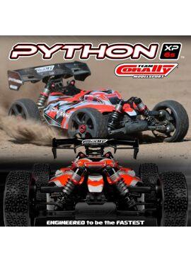 Python XP 6S 1/8 Buggy