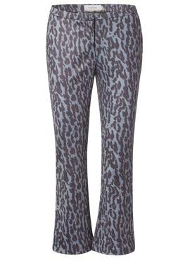 Pine pants