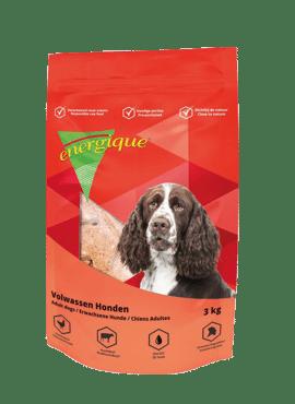 Energique volwassen hond