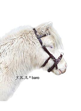 F.R.A. baro / kaptoom