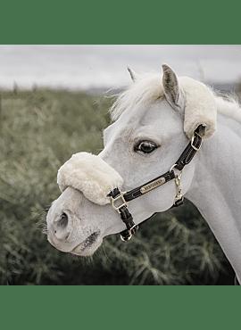 Lederen halster Kentucky sheepskin