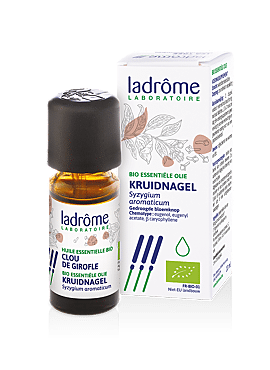 Syzygium aromaticum - Kruidnagel bio 10ml