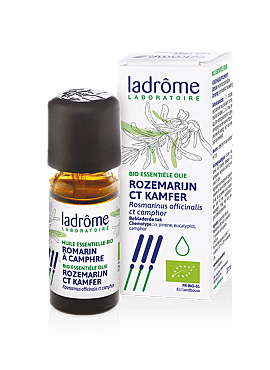 Rosmarinus officinalis ct camphor - Rozemarijn ct kamfer bio 10ml