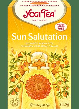 Yogi Sun Salutation 17b