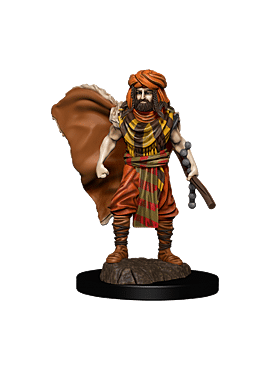 D&D Icons of the Realms: Premium Painted Figure - Human Druid Male