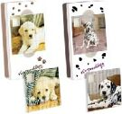 DS Puzzle Case Magic Nintendogs - Big Ben product image