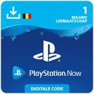 Playstation Now 1 mnd - PlayStation Network Kaart (België) product image