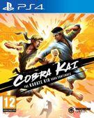 Cobra Kai - The Karate Kid Saga Continues product image